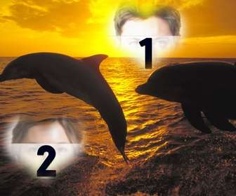 Collage for two photos heart-shaped and dolphins jumping.