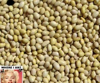 Photo game to find the face you upload in food grains.