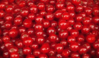 Set a red cherries to find your photo.
