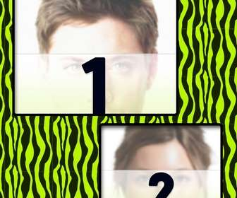 Create a collage with green and yellow zebra patterned and two photos online.