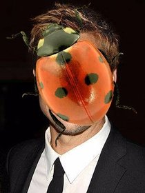 Photomontage to put a ladybug on your photos.