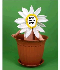 Photomontage for kids flower costume in a pot.