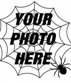 Put a spiders web and a spider in your photo, terror effect