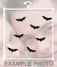Bats flying to paste on your photos and decorate them with this sticker