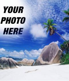 Photomontage to make a collage with your photo and the heaven of this island paradise. See palm trees behind some rocks to the beach, a turquoise sea and blue sky with patches of white clouds.