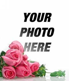 Photomontage with pink roses with white gradient background to place your romantic photos