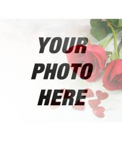 Photomontage of love with red roses and hearts to overlay on your photos with your loved partner