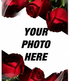 Setting love to get a photo. Ideal as souvenirs Valentine or Saint George. xxx 6 flowers are red, roses without thorns and a sparkling effect of silk or gauze to provide an even greater feeling of softness to the composition.