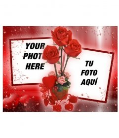 Photo frame where you can put two pictures that appear linked by some roses. red background with hearts