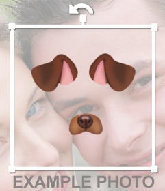 Add the ears and nose of a dog in your photos for free