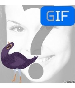 Trash Doves  meme gif animation to put your photo in