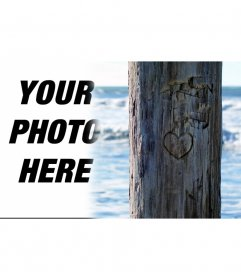 Put the photo you want by a tree which is carved a heart. Ideal for a postcard.
