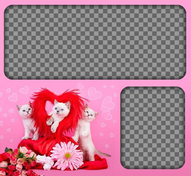 Romantic photomontage with kittens and hearts with a pink background to place two images of love