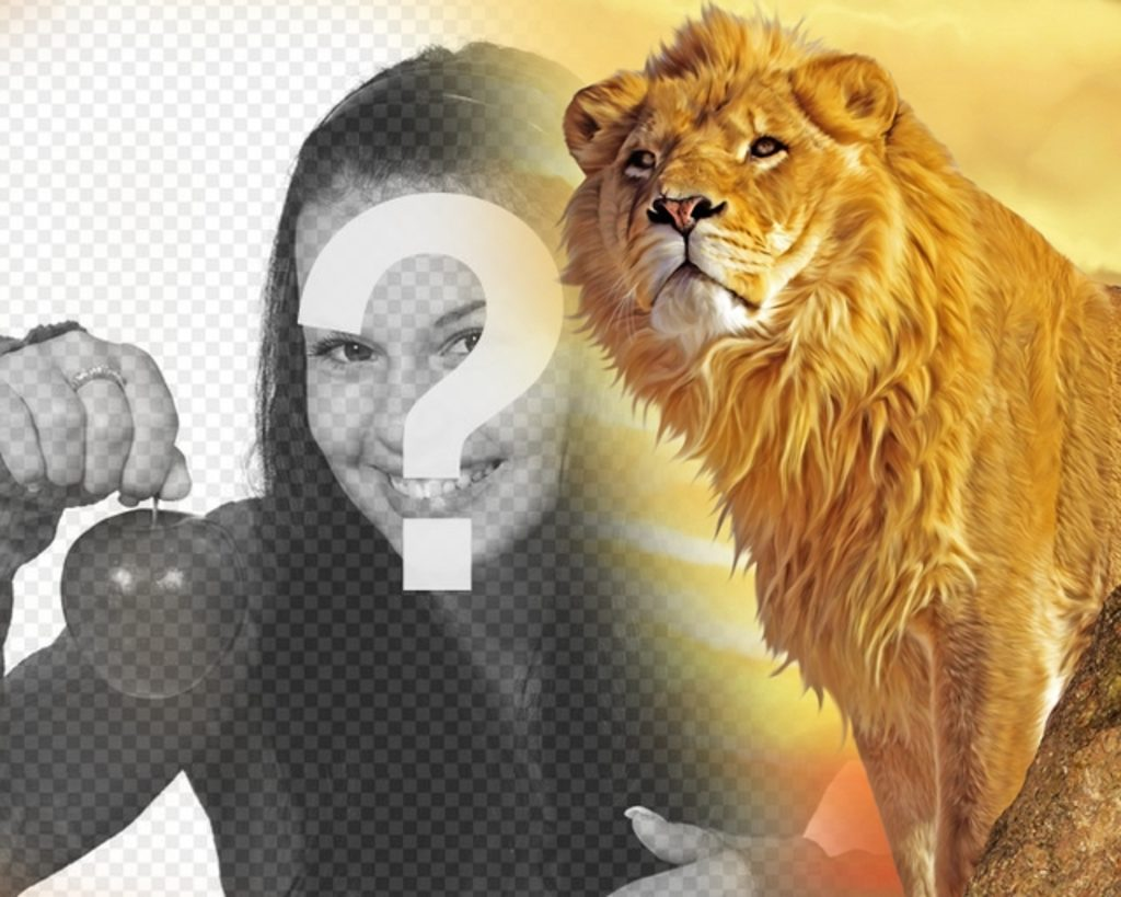 Photomontage with a lion and yellow background to put your photo in the left cast to the image