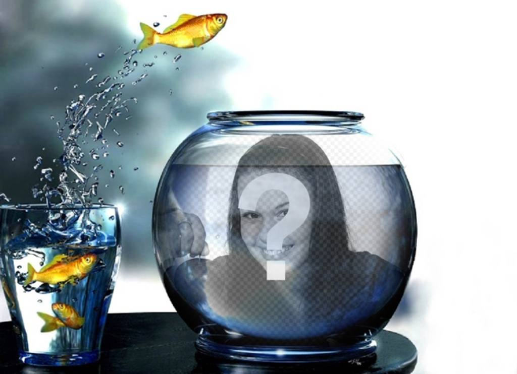 Create a photomontage with a tank full of water with yellow fishes jumping from a glass where you will put a picture