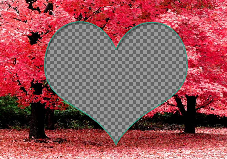 Frame for two photos inside a heart on cherry blossoms