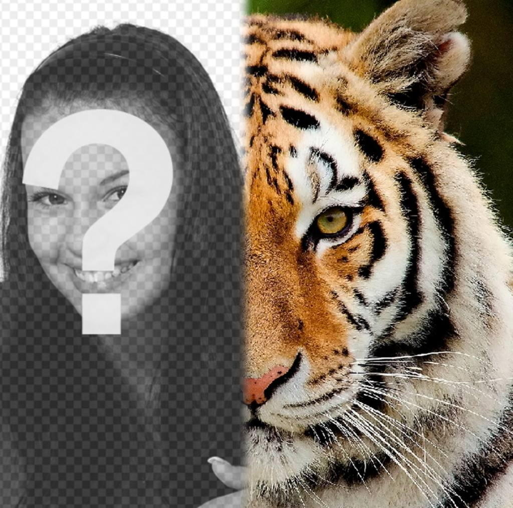Photomontage to have half of your face like a tiger