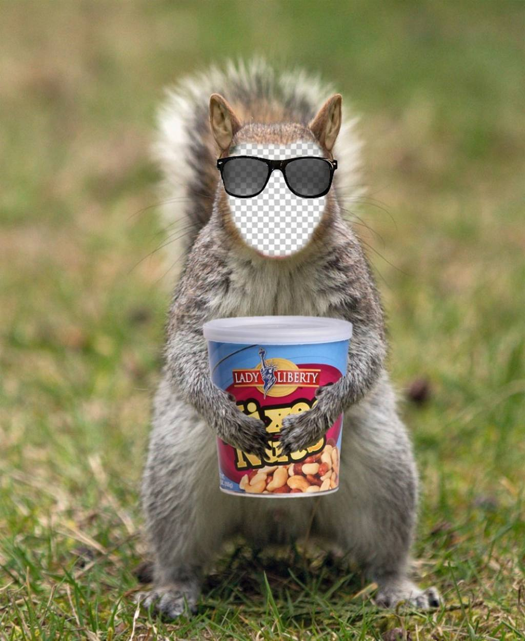 Put your face in a squirrel with a hipster sunglasses and a can of peanuts