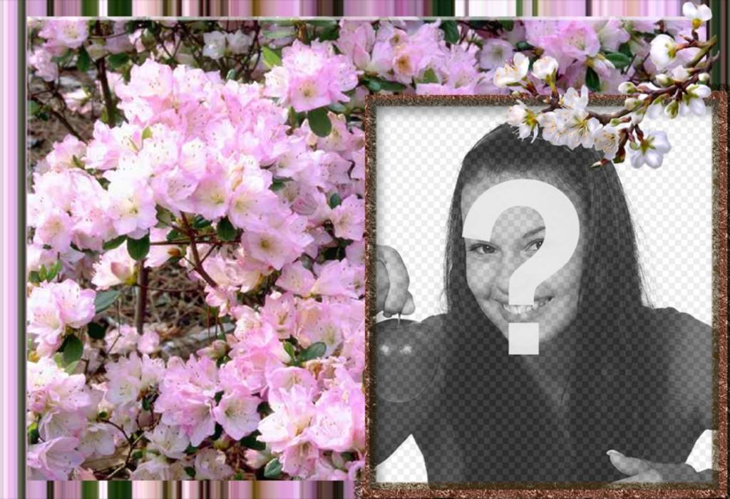 Photo frame for online photos of white flowers and spring