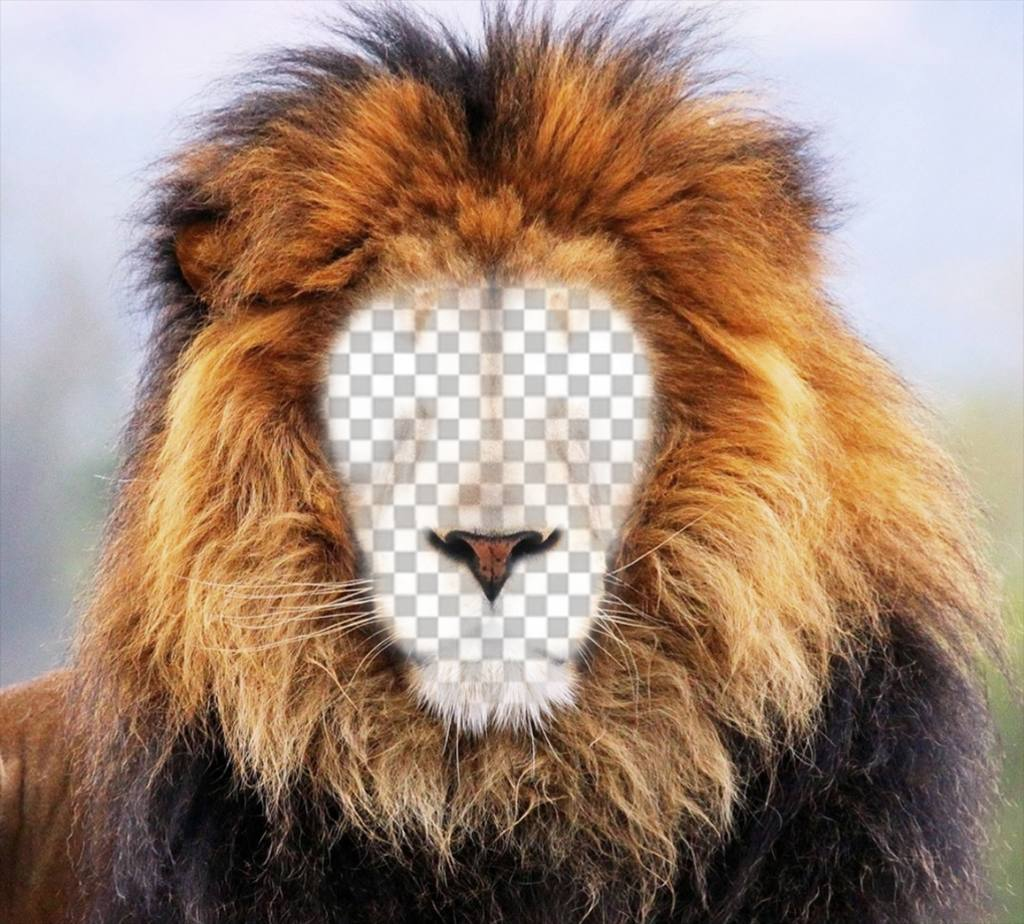 Photomontage of a lion to put your face online