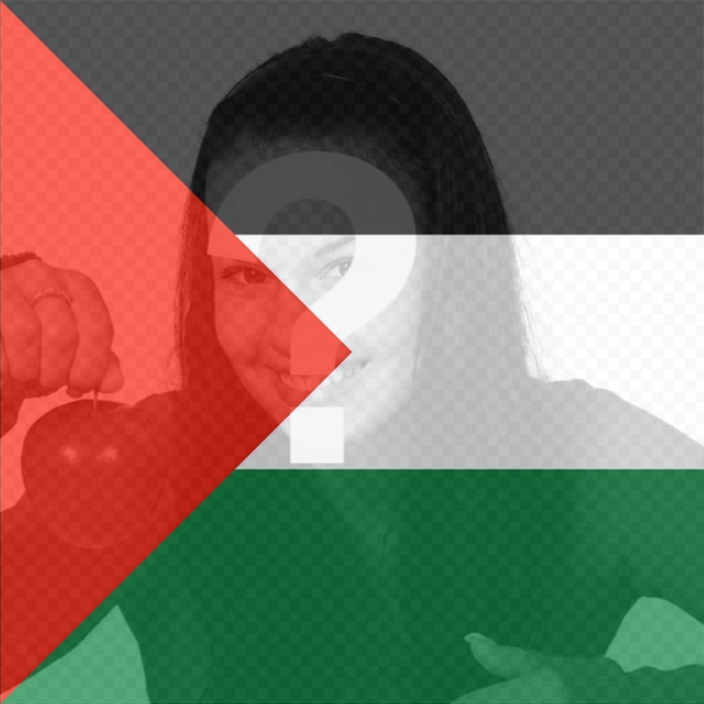Filter of Palestine Flag to put in your photo