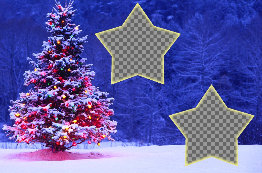 Christmas collage with a tree to put two photos