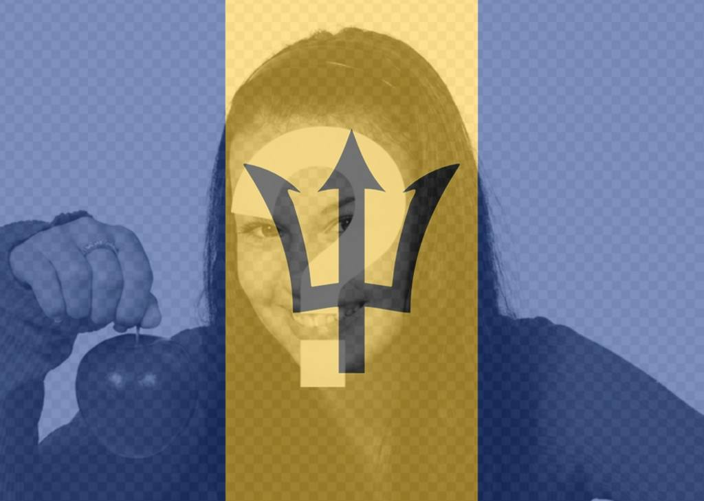 Barbados flag to put on your profile picture