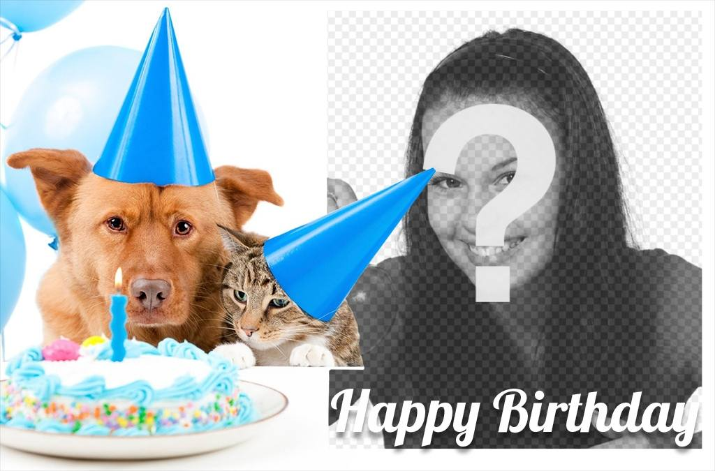Sweet birthday card with a dog and a cat for a picture