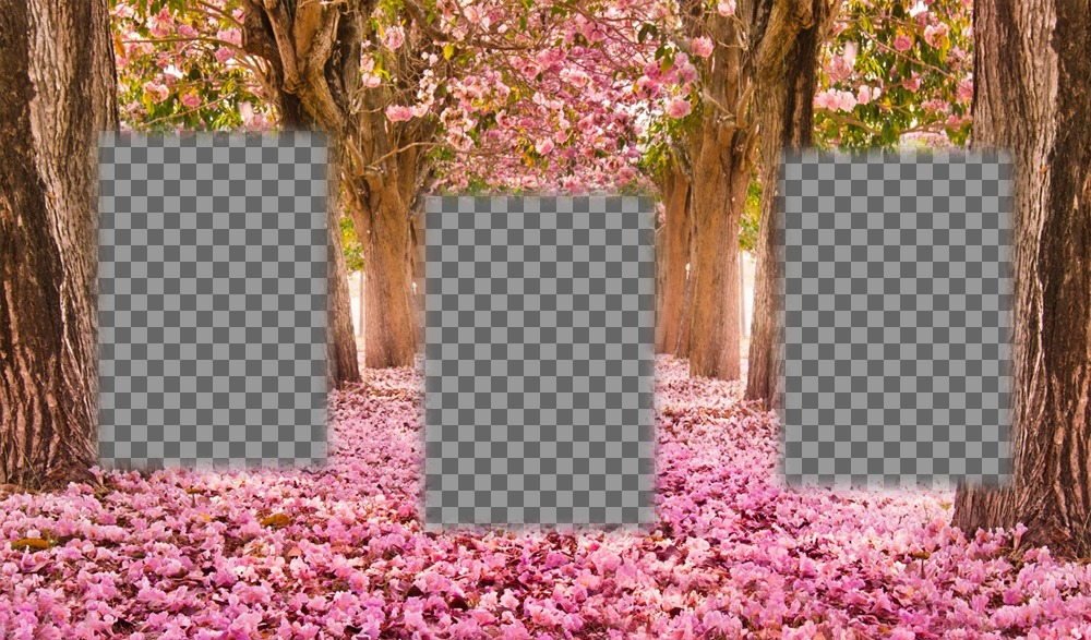 Free collage to edit with three pictures and add them to a flowered landscape