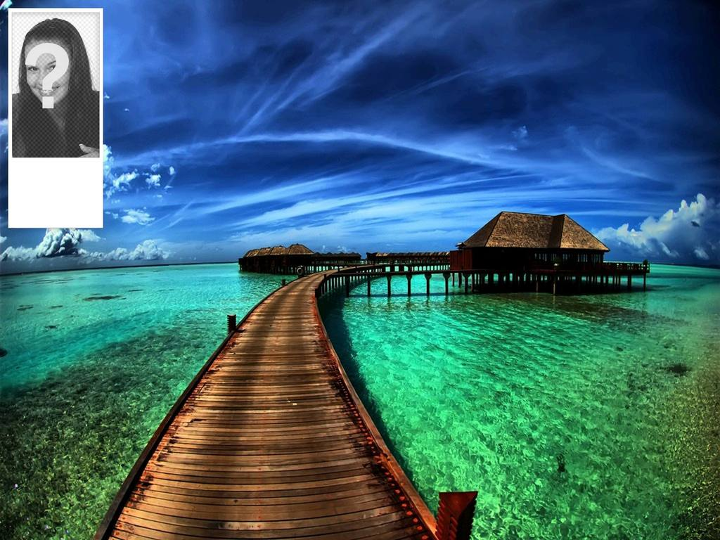 Twitter background to put your photo of Caribbean beach hut