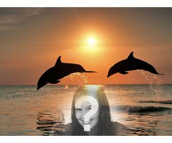 Collage with your photo and dolphins jumping in the sea.