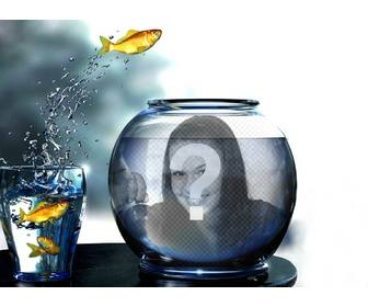 create photomontage with tank full of water with yellow fishes jumping from glass where u will put picture