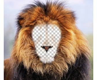photomontage of lion to put ur face online