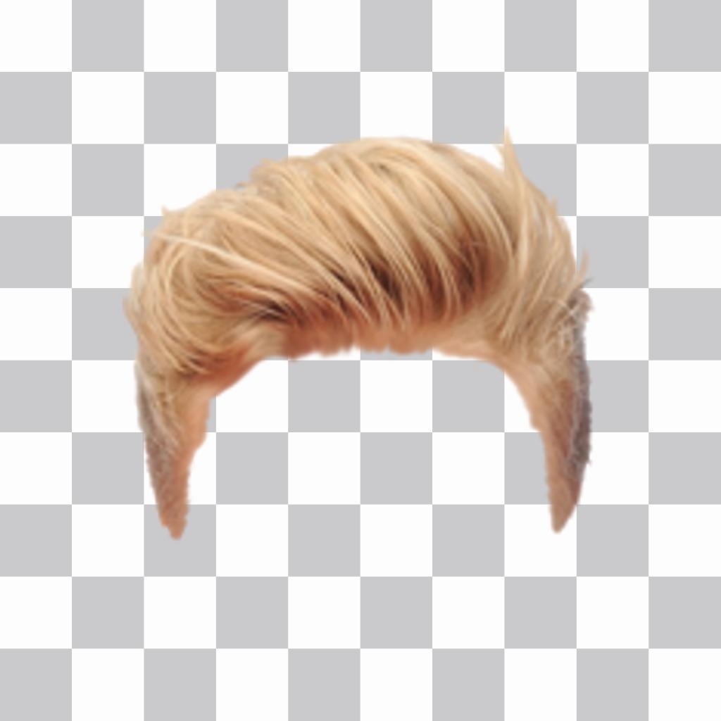 Online editor blond hair wig for men